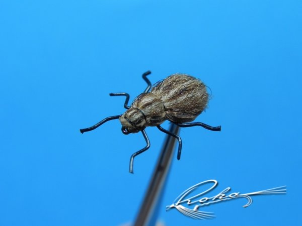 Beetle Special.jpg