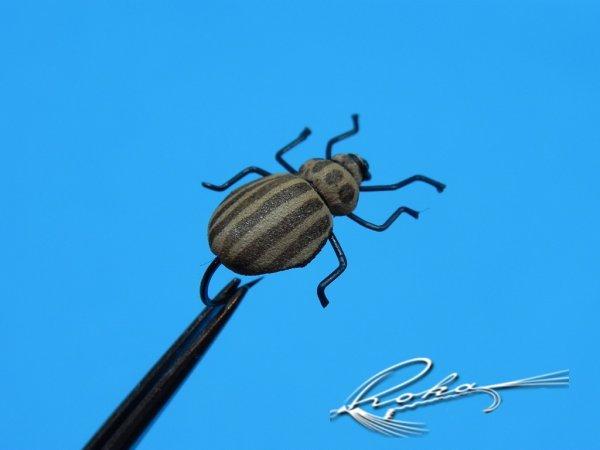 Bug Beetle.jpg