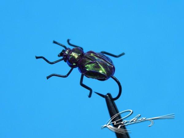 Chrysochus Beetle.jpg