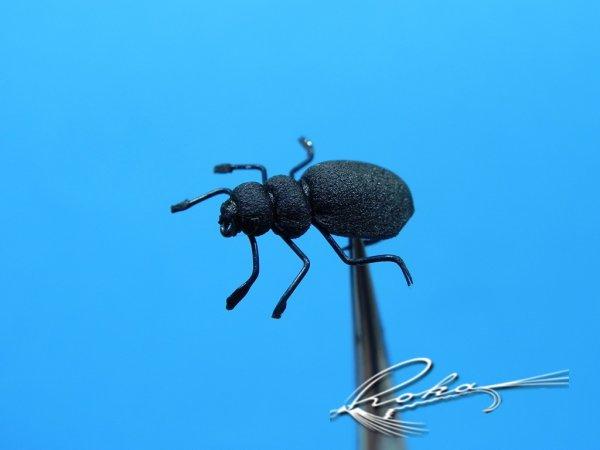 Metrius Beetle.jpg