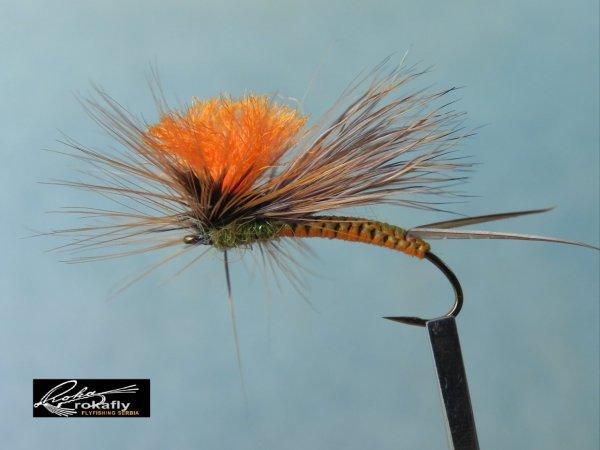 TN_Woven stonefly.JPG